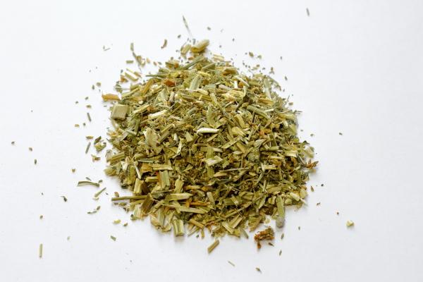Steinkleekraut